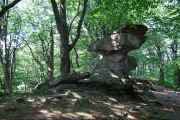 Krynica-Zdrój Atrakcja Warto zobaczyć Kamień Diabielski